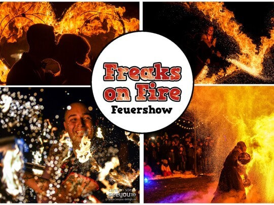 Künstlervermittlung: Freaks on Fire Bildercollage Frankfurt - Künstleragentur | DIE ALLESLÖSER