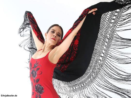 Künstlervermittlung: Flamencotänzerinnen Frankfurt - Künstleragentur | DIE ALLESLÖSER